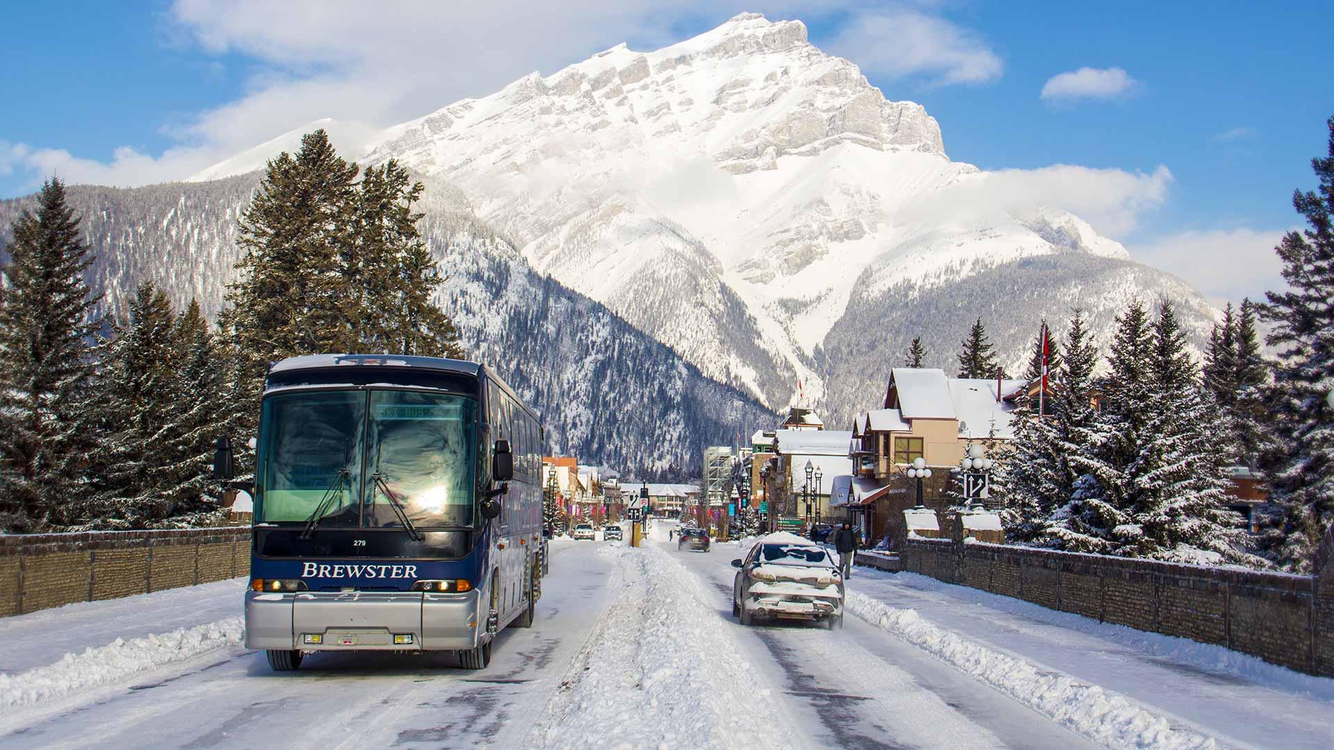 Ski Shuttle