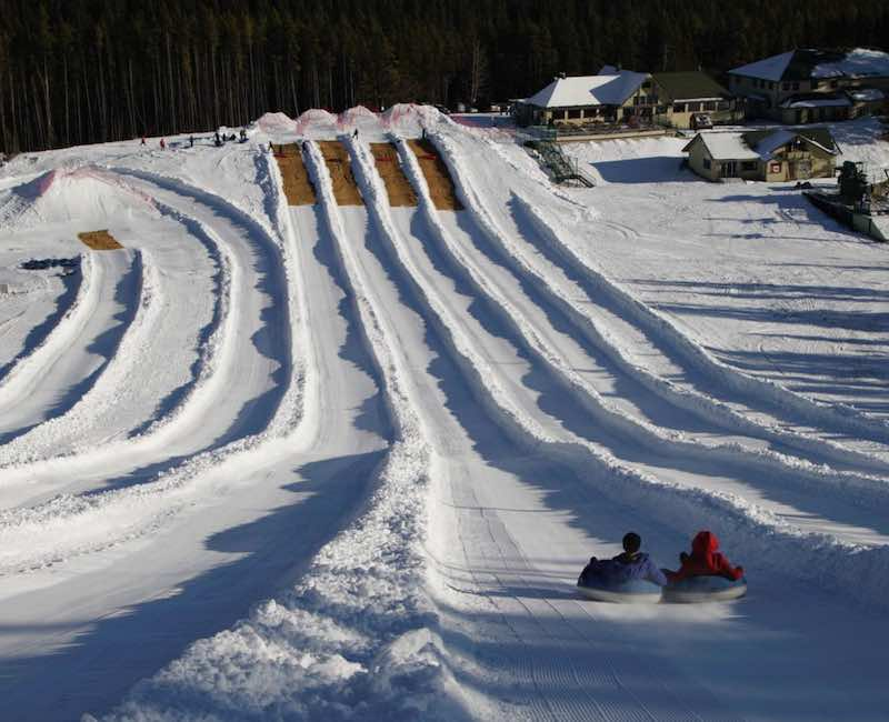 Tubing at Mt. Norquay. Photo courtesy of Mt. Norquay.