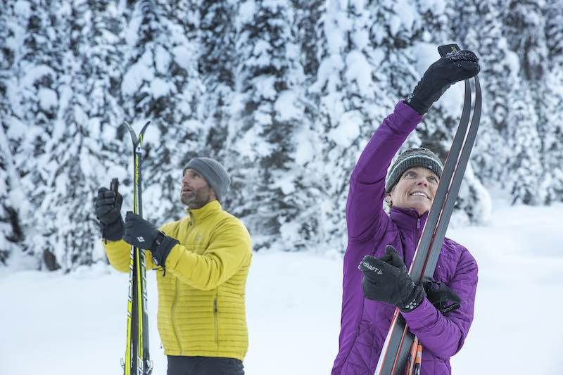 Cross-country skiers at Great Divide Trail, Lake Louise, Banff National Park,