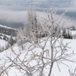 Dreaming of Winter? 7 Reasons to Start Your Season with a Canadian Ski Trip