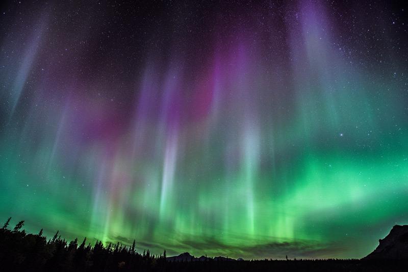 Northern Lights over Cascade Meadows, Banff National Park.