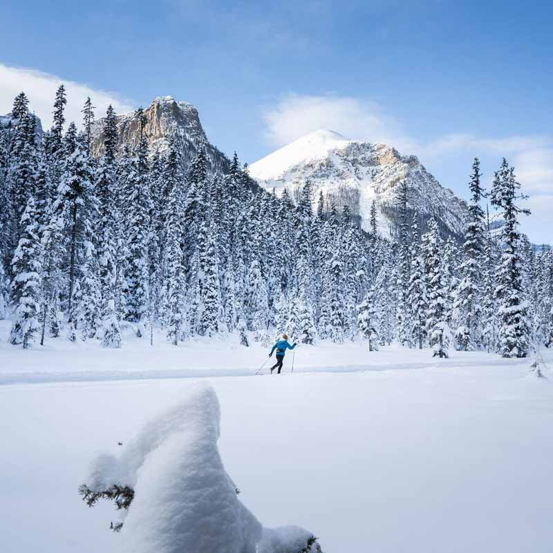 Cross-country skiing near the village of Lake Louise in Banff National Park.