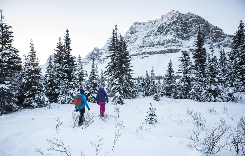 Winter snowshoeing at Bow Lake in Banff National Park.