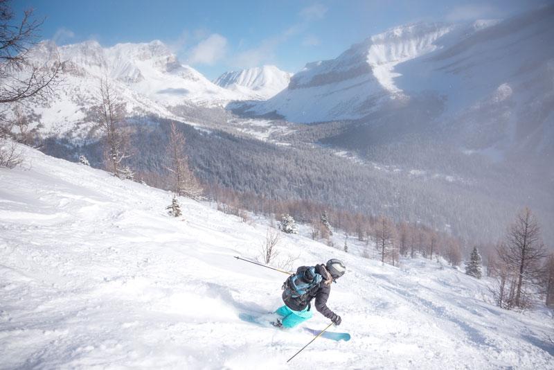 Tree skiing at Lake Louise Ski Resort in Banff National Park.