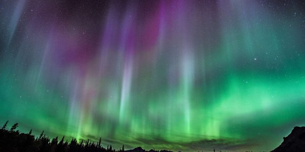 Northern Lights seen from Cascade Meadows in Banff National Park. Photo by Will Lambert.