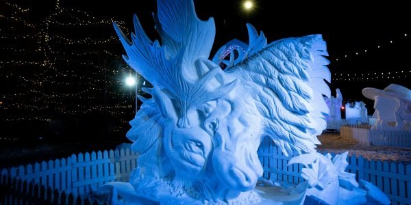 SnowDays_SnowSculptures_Winter_DevaanIngraham_019-custom