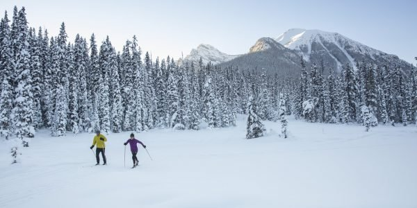 Winter cross country skiing great divide trail near Lake Louise, Banff National Park.